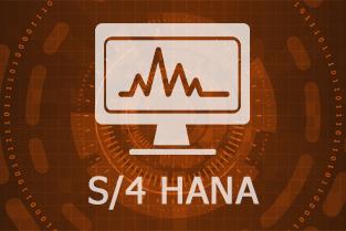 S/4 HANA Day