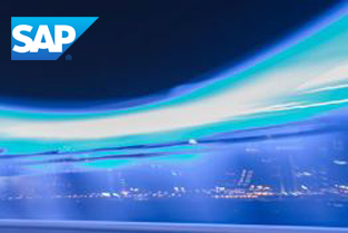 Global Virtual SAP Enterprise Support Day