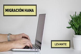 Delegación Levante - Migración a HANA